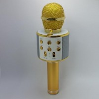 WSTER - Wireless Microphone HIFI Karaoke Speaker