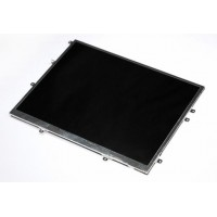 Apple ipad LCD display